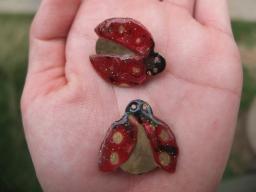 Lady Baby Birds